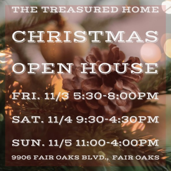 Tree Lighting & Holiday Open House, this Weekend!