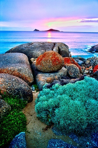 Parcul National Wilsons Promontory, Victoria, Australia