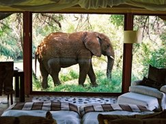 Three Cities Madikwe River Lodge, Madikwe Africa de Sud - de la 606 dolari/noapte