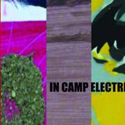 New Trends: Vernisaj în camp electric