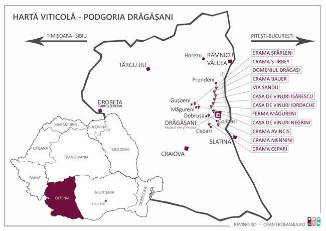 Podgoria Dragasani_2017