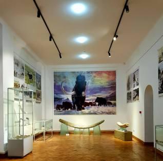 muzeu3