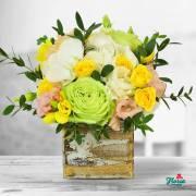 Flori pentru Măriile din viața ta, de la Floria.ro!
