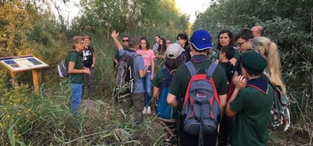 """Ai liber la vizitare în Parcul Natural Văcărești după ce a fost """"inaugurată"""" o poteca tematică de 2,5 km"""