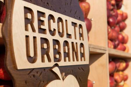 Meeting Mr. Stassen in the Orchard_Recolta Urbana (11)