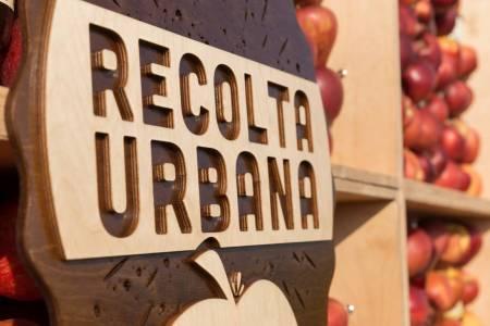 Meeting Mr. Stassen in the Orchard_Recolta Urbana (11)