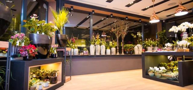 Floria se extinde în aeroportul din Otopeni