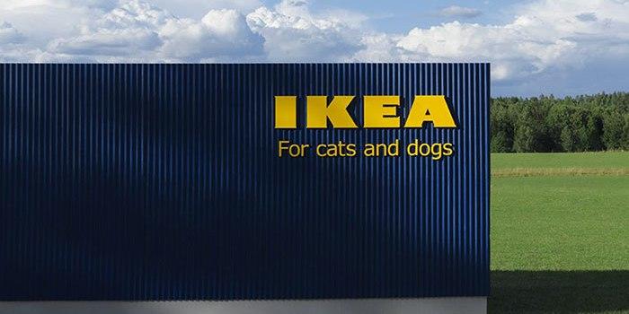 New Trends:  IKEA a lansat o colecție de mobilă pentru animalele de companie – GALERIE Foto