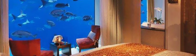 """Top 10 """"room with a view"""" – galerie FOTO"""
