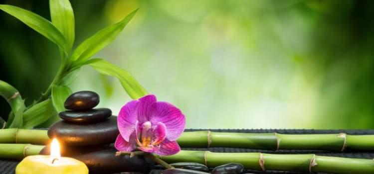 New Trends: Ce legătura este între Feng Shui şi relaţiile romantice