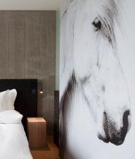 ion-luxury-adventure-hotel-room-k-02-x2-1