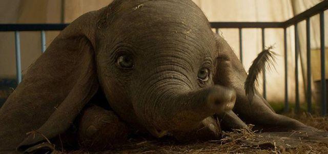 """""""Dumbo"""" , un film fantastic pentru toate vârstele despre familie și dragoste"""
