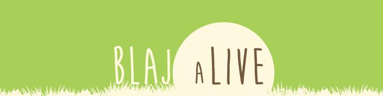 The Motans, Mihail, Gramofone si Marú sunt primii artisti confirmati la Blaj aLive Festival