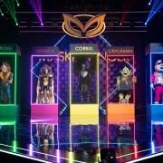 Corbul, Leoaica, Panda și Căpcăunul sunt finaliștii Masked Singer România