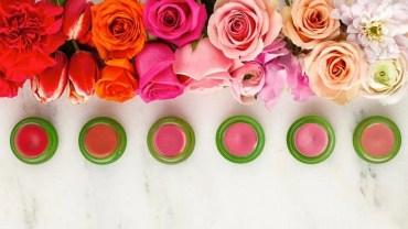 Tata Harper Organic Makeup