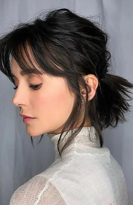 Short Ponytail Hairstyle