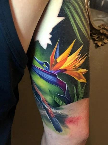 Birds Of Paradise Tattoo
