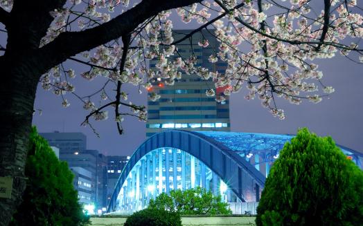 Tokyo-Japan-The-Trent
