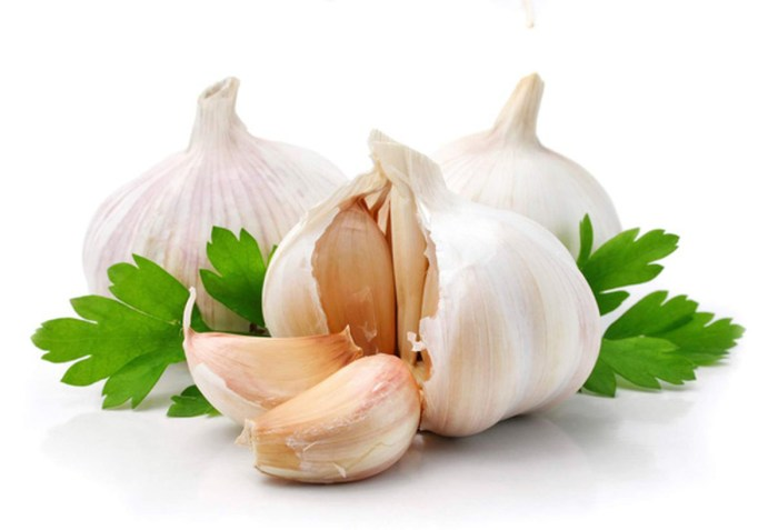 Garlic The Trent