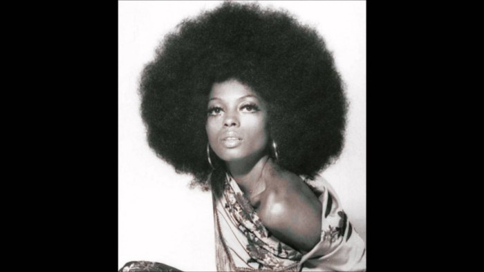 Diana ross the trent 3303