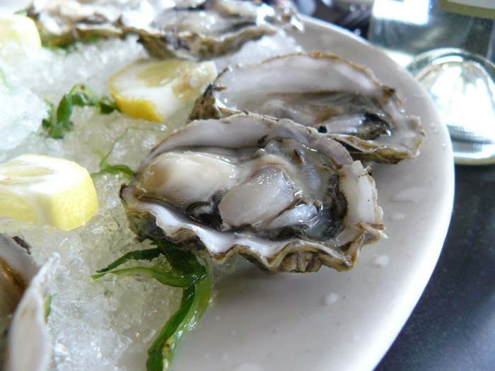Oysters-on-ice-Holisticnutritionista