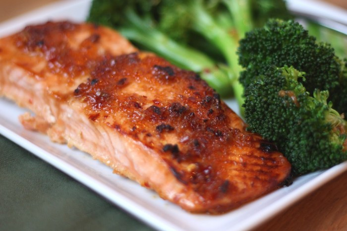 salmon fish meal dish