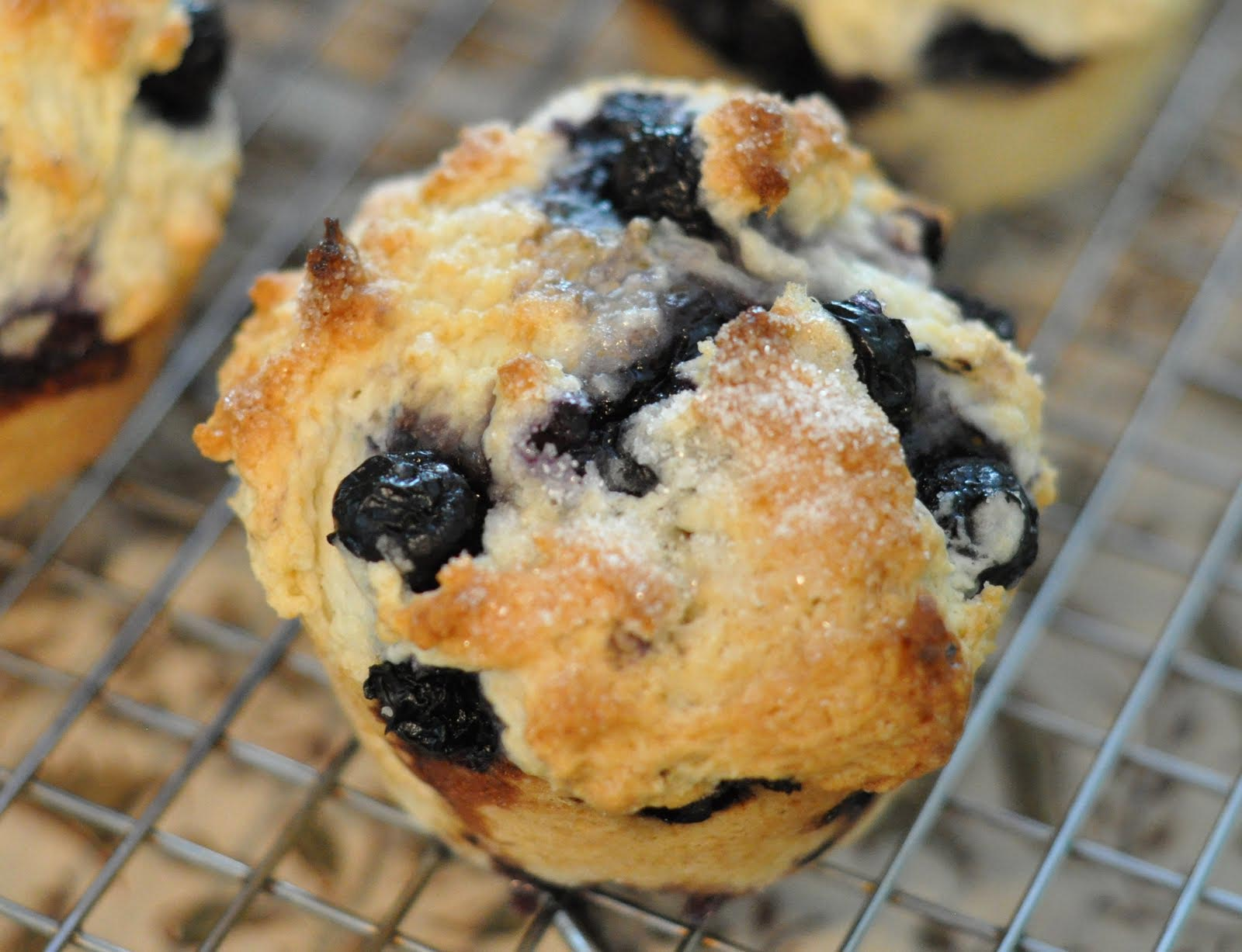 how to make a fresh blueberry muffin in 3 minutes without