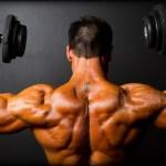 Muscle, Adapt, Diet, Joe Dowdell, Mike Roussell, Nick Tumminello