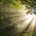 Reno Omokri Daily Meditations Morning Sun
