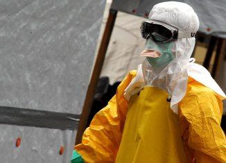 Ebola Ebola Virus