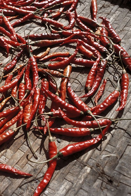 chilli_chillies_gl_10nov10_rex_b_426x639