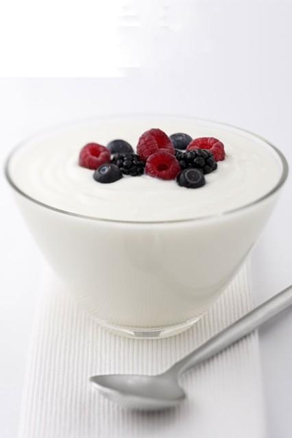 yogurt_gl_10nov10_rex_b_426x639