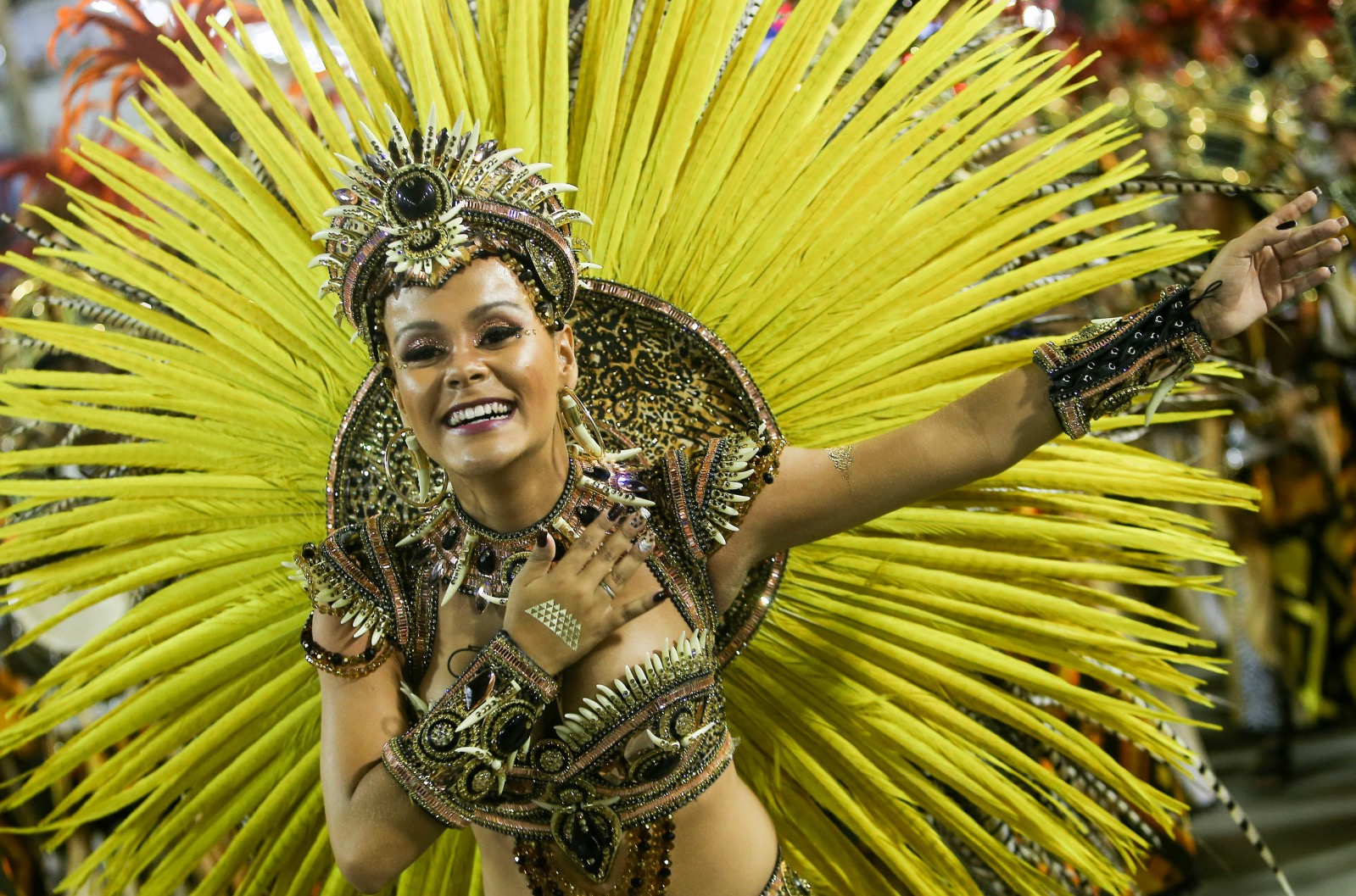 1000+ images about Carnivals on Pinterest | Rio carnival