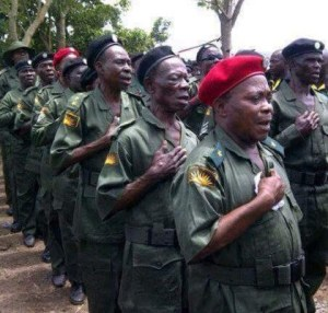 Veterans of Biafran Army stage solidarity march