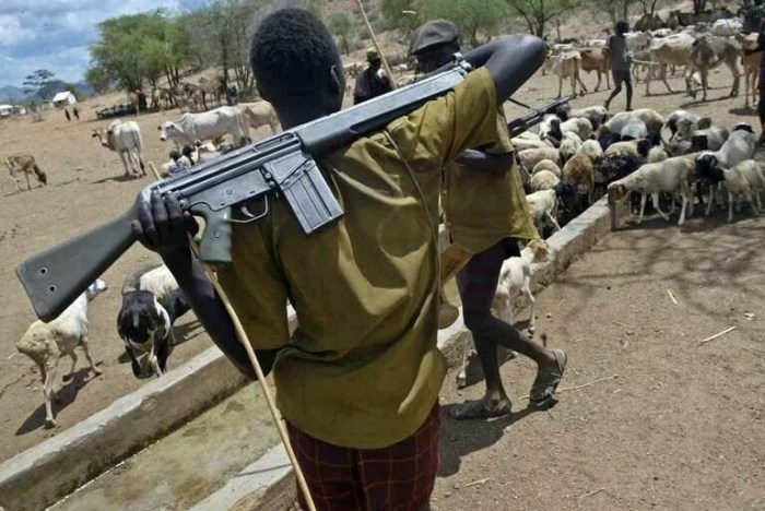 A Fulani Herdsman pictured with a weapon
