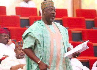 Dino Melaye, Assassination,