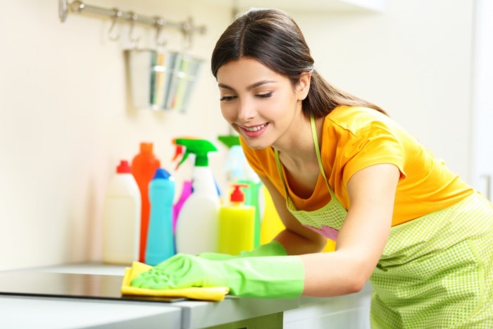 home cleaning service maid service