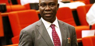 Ekweremadu, Nigeria, Minimum Wage, Support