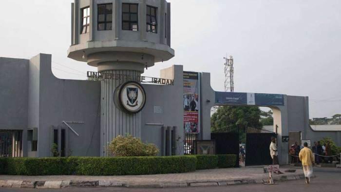 University Of Ibadan, Withdraw, Student, Performance