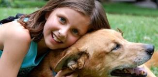 pets girl pet kids pets child children cat dog