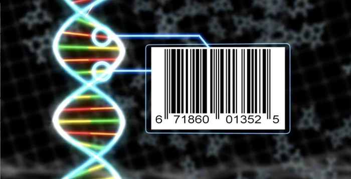 DNA Barcodes