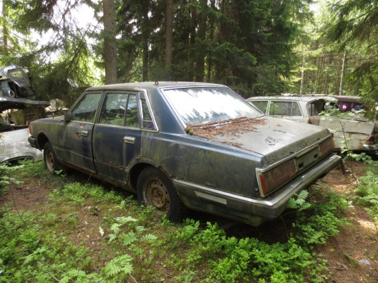 01 - 1982 Nissan Cedric Down On the Junkyard - Picture courtesy of Murilee Martin