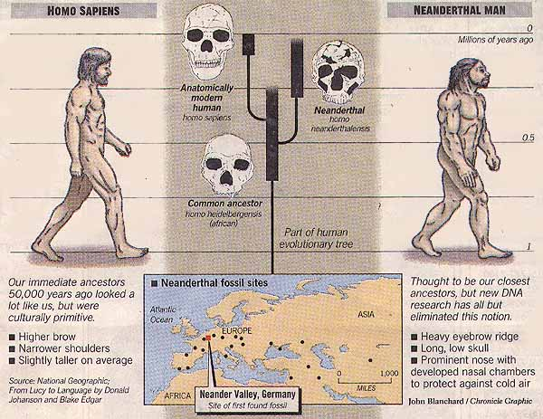 """Basically, I estimate that about seventy percent of the present crisis on this planet can be fairly attributed to the machinations of Neanderthal-Semitic elements of the human population against the Cro-Magnon majority.""  — Michael Bradley, Esau's Empire"