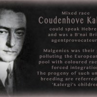 Elevator Pitch 4: The Coudenhove-Kalergi Plan