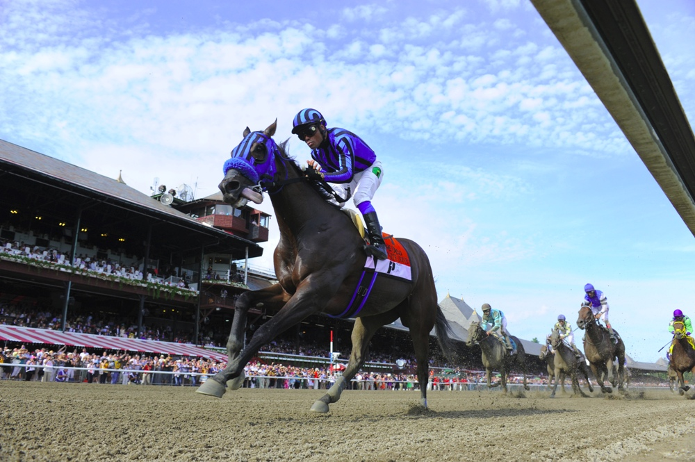 Private Zone winning the 2015 Forego Stakes (gr. I) at Saratoga - Photo by NYRA/Coglianese Photos