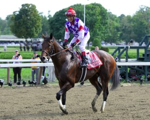 Runhappy Winning the 2015 King's Bishop Stakes - Photo by NYRA/Coglianese Photos/Lauren King