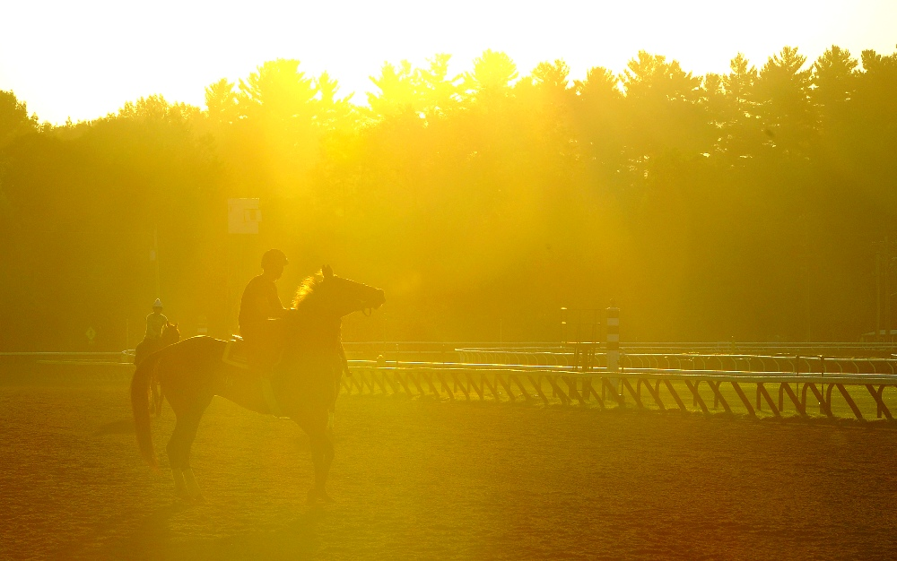 Saratoga Stakes Analysis–August 8, 2015