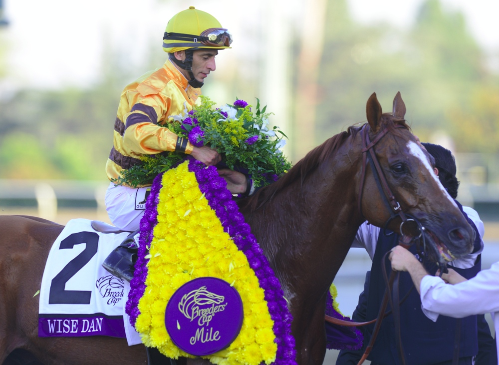 Wise Dan Week Part 7: The 2014 Shadwell Turf Mile