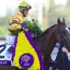 Wise Dan in the winner's circle after the 2012 Breeders' Cup Mile - Breeders' Cup Photo (c)