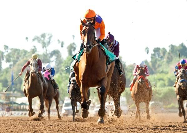Beholder and jockey Gary Stevens win the Grade I, $300,000 Zenyatta Stakes, Saturday, September 26, 2015 at Santa Anita Park, Arcadia CA. © BENOIT PHOTO